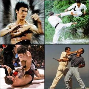 Bruce Lee ed il Jeet Kune Do, le arti marziali tradizionali, le MMA ed il Brazilian Jiu Jitsu, il Krav Maga